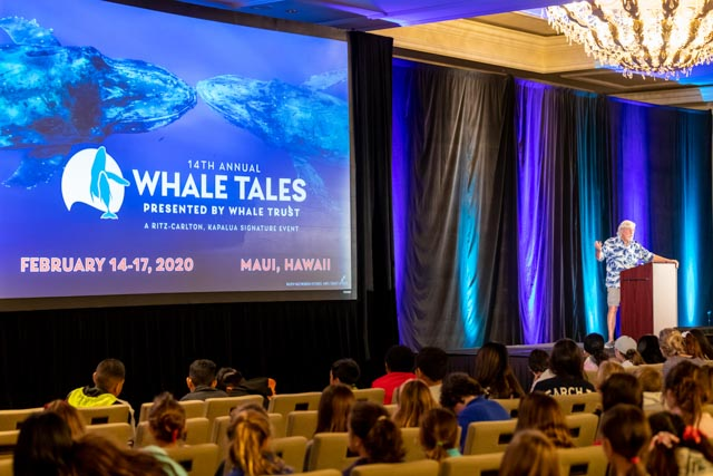 Whale Trust Whale Tales 2020_107_high_res_berkowitz