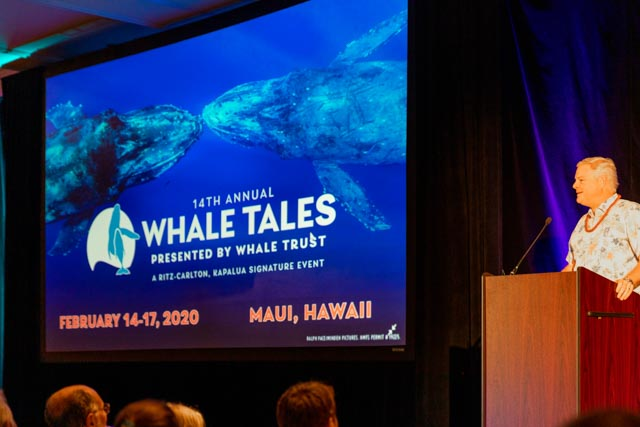 Whale Trust Whale Tales 2020_165_high_res_berkowitz