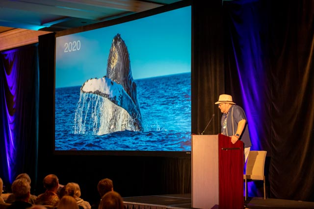 Whale Trust Whale Tales 2020_196_high_res_berkowitz