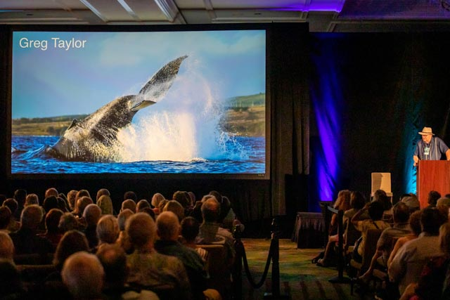 Whale Trust Whale Tales 2020_198_high_res_berkowitz