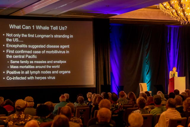 Whale Trust Whale Tales 2020_224_high_res_berkowitz