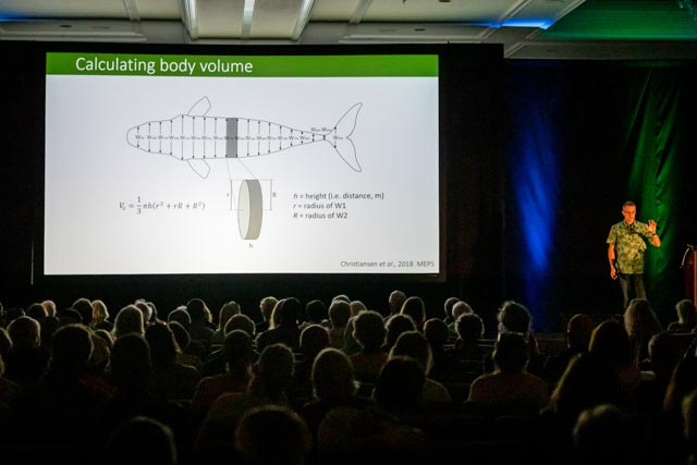 Whale Trust Whale Tales 2020_292_high_res_berkowitz