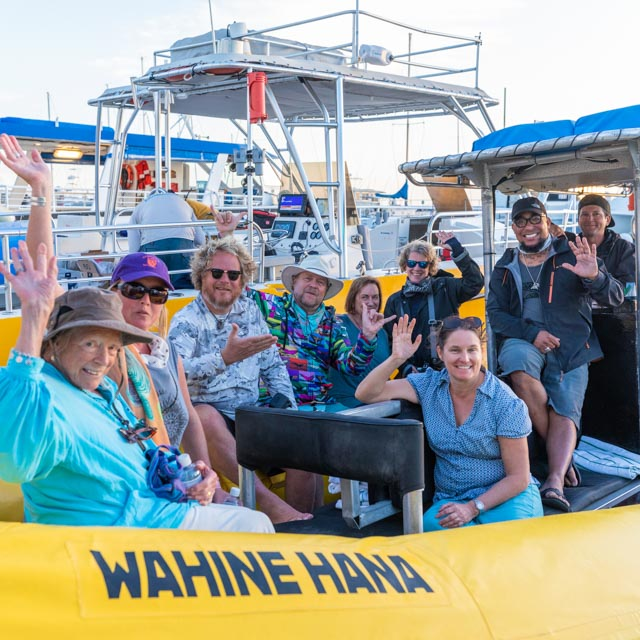 Whale Trust Whale Tales 2020_666_high_res_berkowitz